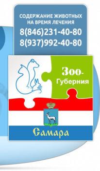Стационар для животных Зоо-Губерния